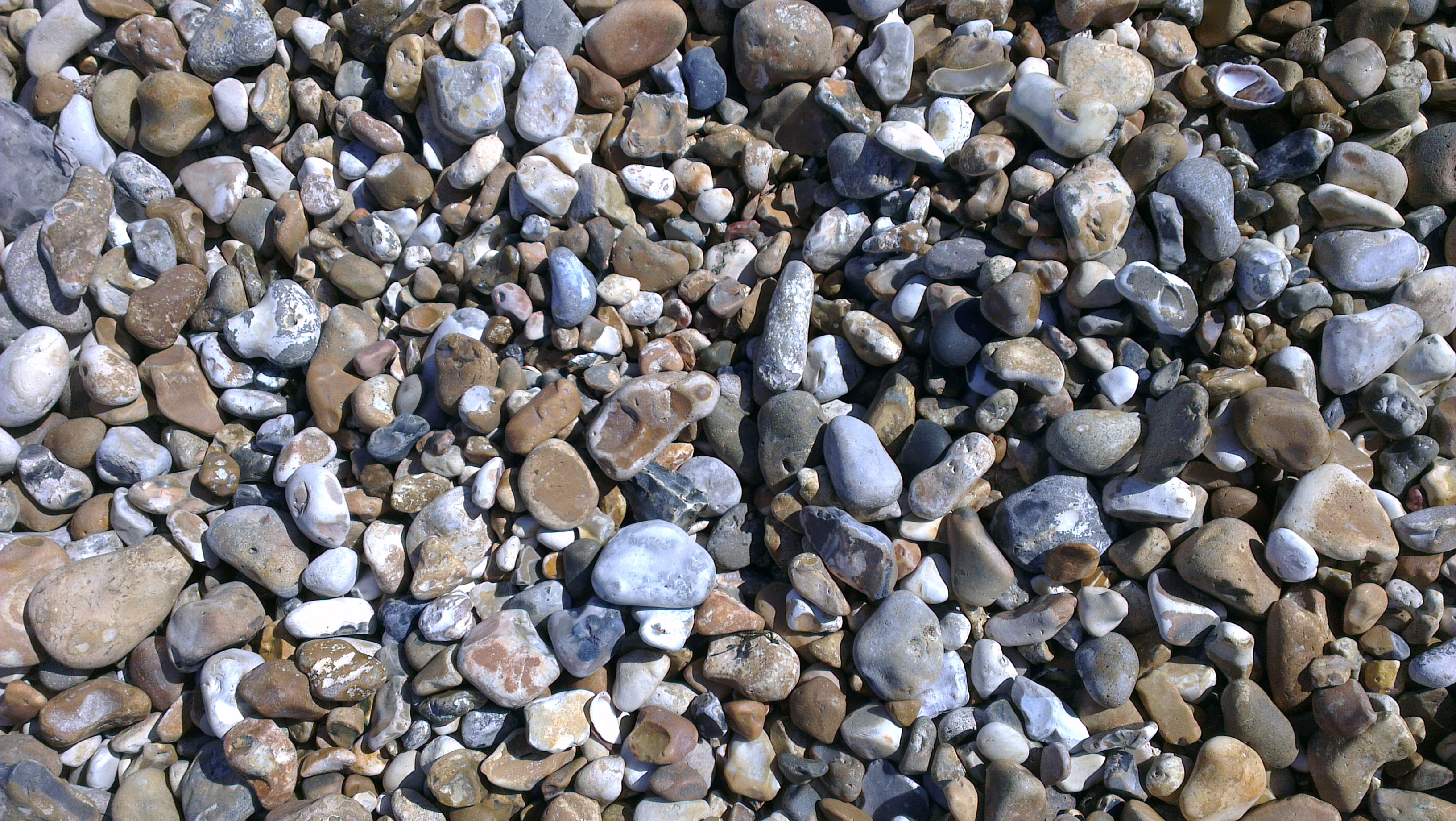 Beach Shingle.13
